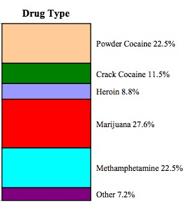 US prison drug type